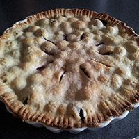 Blueberries: Sweet, Juicy, Healthy - Pie